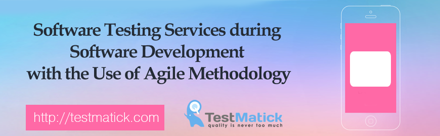 Software-Testing-Services-during-Software-Development-with-the-Use-of-Agile-Methodology