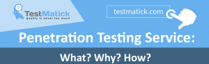 Penetration-Testing-Service