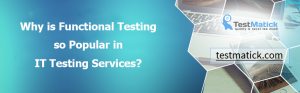 Why is Functional Testing so Popular in IT Testing Services