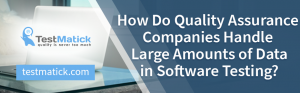 How-Do-Quality-Assurance-Companies-Handle-Large-Amounts-of-Data-in-Software-Testing