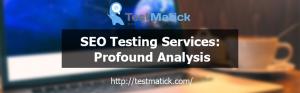 SEO-Testing-Services-Profound-Analysis