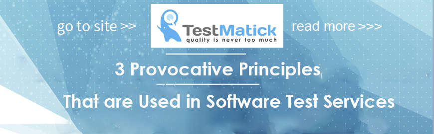3 Provocative Principles That are Used in Software Test Services