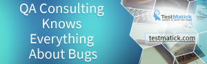 QA-Consulting-Knows-Everything-about-the-Bugs