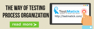 The Way of Testing Process Organization