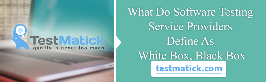 white box testing for web application