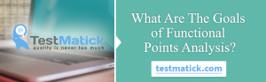 What- Are-The-Goals-of-Functional-Points-Analysis-?