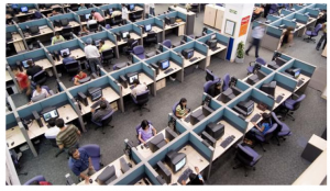 Indian IT Field
