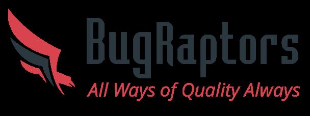 Логотип BugRaports