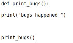 Модуль bugs.py