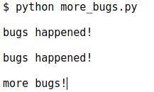 Результат more_bugs.py