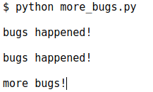 The More_bugs.py Result