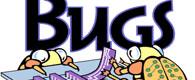 bebugging